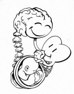 Herz-Verstand-Geschichten für Paare